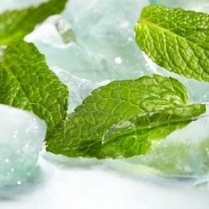 E-liquide Menthe Glaciale
