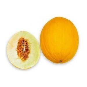 Flacon prédosé Melon Canari