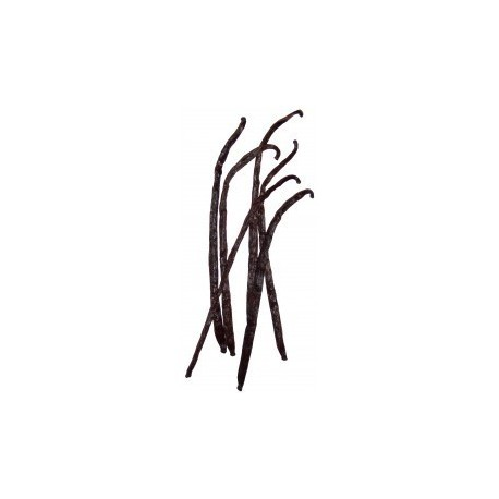 Flacon prédosé Vanille Madagascar