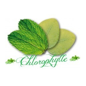 Flacon prédosé Chlorophylle